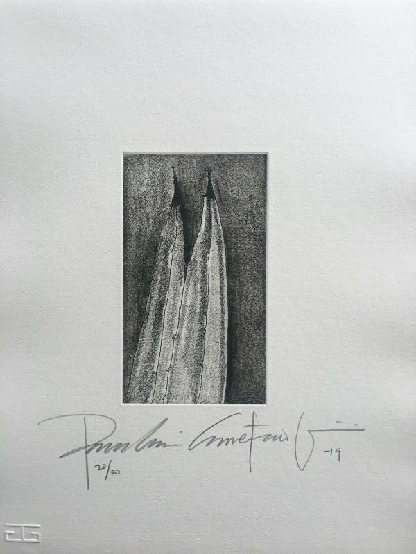 Carpeta de grabados AGAVE